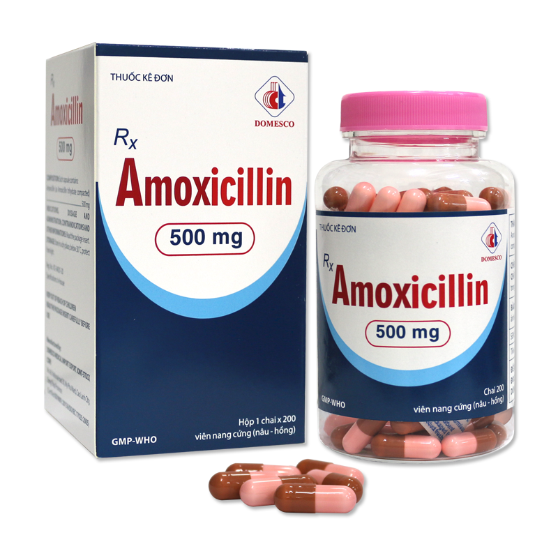 AMOXICILLIN 500MG (NÂU HỒNG)